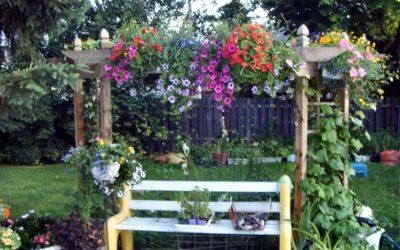 My garden photo album