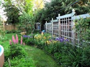 WebMom's Garden in Spring